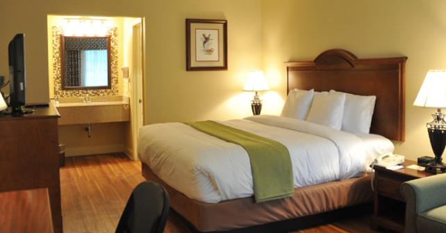 Standard Room King (Sleeps 4)